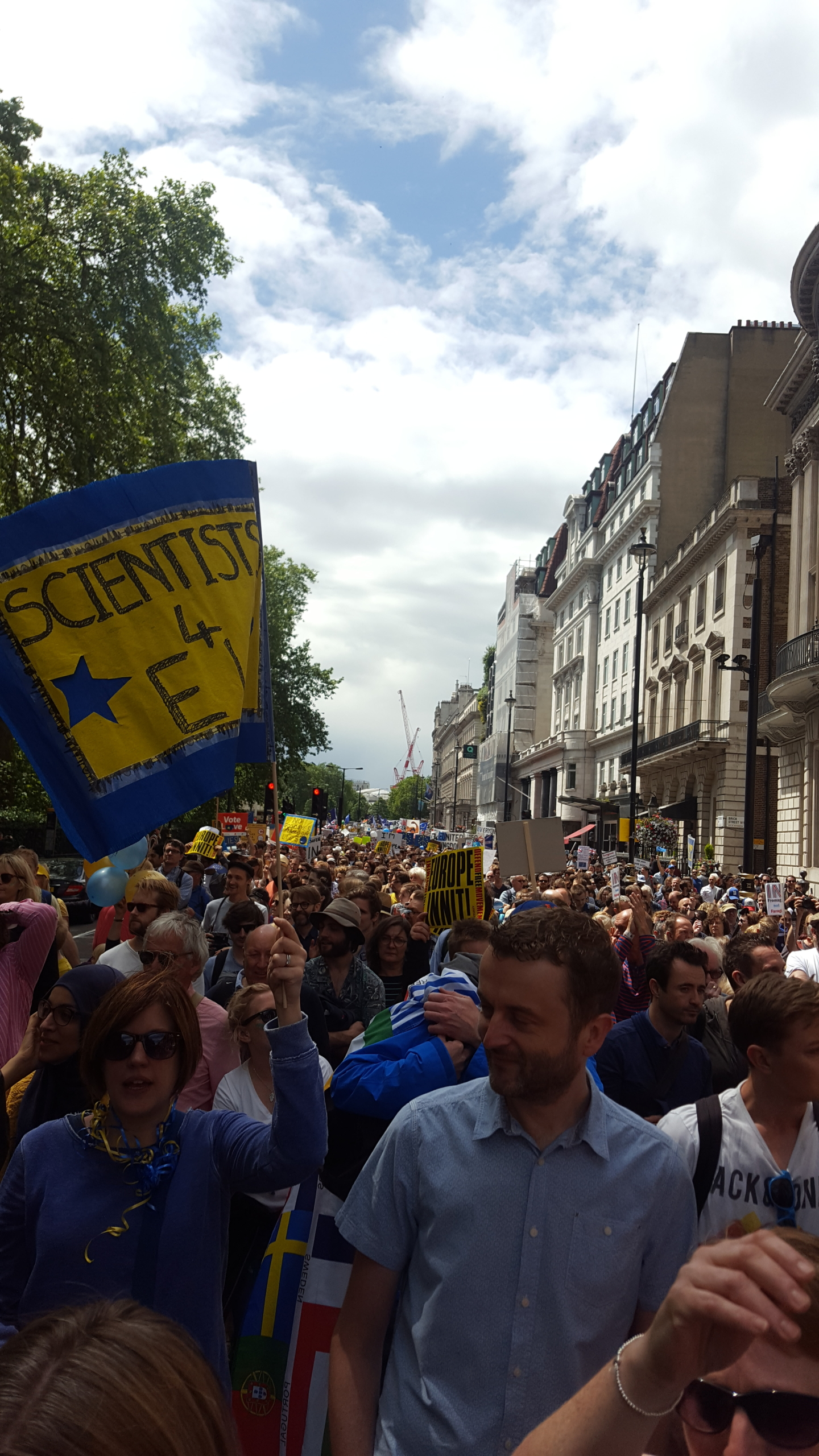 Picture of a Remain march in Central London